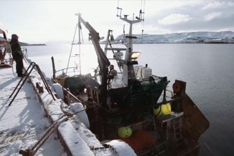 Lasting av krabber på kaia i Bugøynes